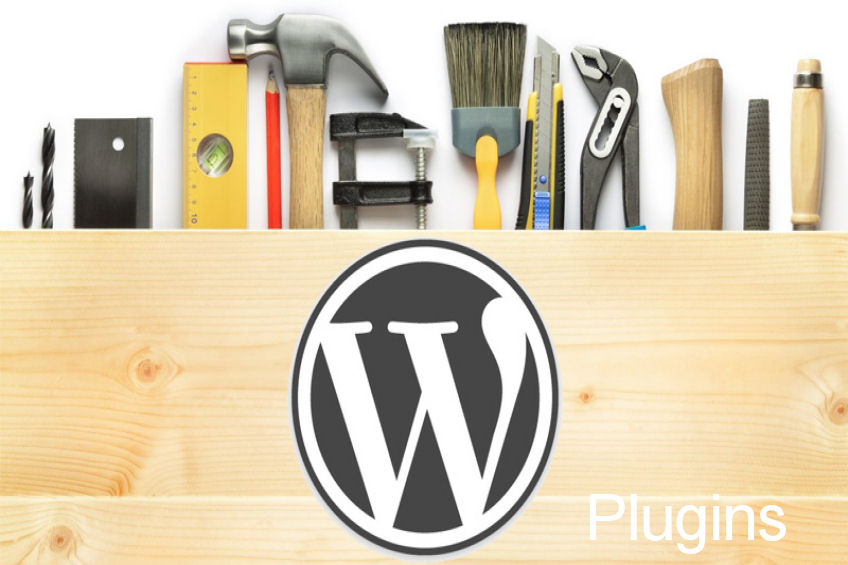 What are the most popular WordPress Plugins?